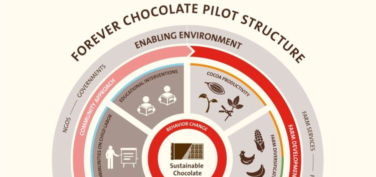 BARRY CALLEBAUT LAUNCHES PILOT PROJECTS TO DRIVE CHANGE IN COCOA FARMING