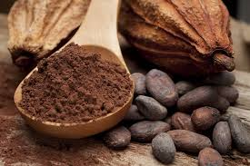 PHENOLS IN COCOA BEAN SHELLS MAY REVERSE OBESITY-RELATED PROBLEMS-STUDY FINDS