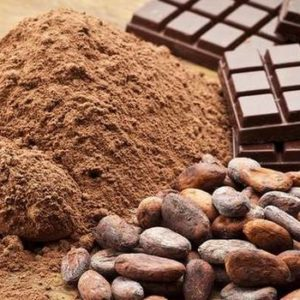 COCOA PRICE MAKES SIGNIFICANT GAINS