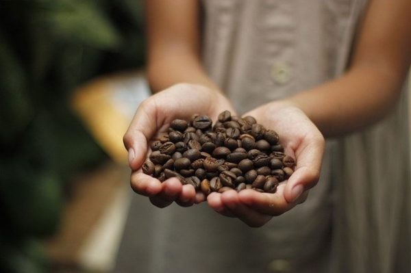 SUPPORT MINAS HILL COFFEE TO HELP VULNERABLE KIDS IN BRAZIL GET INTERNET ACCESS