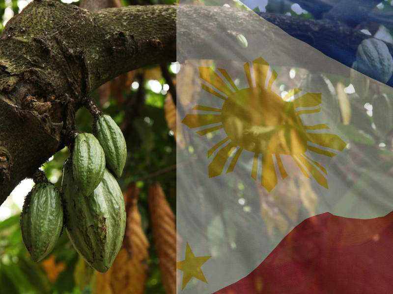 WHY THIS FILIPINO MAILMAN QUIT TO BECOME A CACAO FARMER