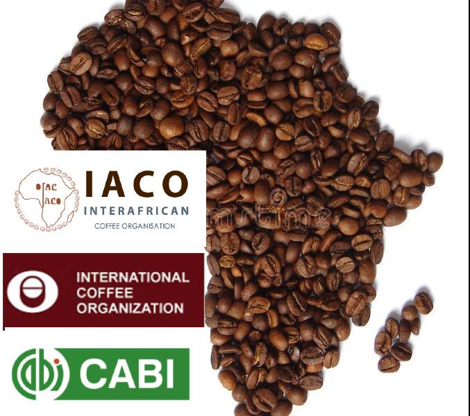 CONSTRUIRE UN PROGRAMME POUR SAUVEGARDER LE SECTEUR DU CAFÉ EN AFRIQUE DE L'IMPACT DU COVID-19