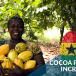 FARMERS HAPPY WITH 28.2% COCOA PRICE INCREASE