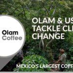 UN ENFOQUE DE 'PAISAJE' PARA FACILITAR LA SOSTENIBILIDAD DEL CAFÉ EN MÉXICO