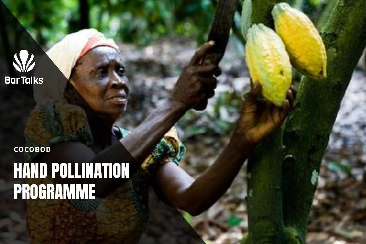 Pollination Programme
