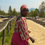 ROOT CAPITAL ANNOUNCES 'PARTNERSHIP FOR SUSTAINABLE SUPPLY CHAINS' PROGRAM