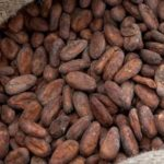FERRERO AND 'SAVE THE CHILDREN' PARTNER ON COCOA SUSTAINABILITY EFFORTS