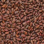 SUPPLY CONCERNS AND THE PRICE OF COCOA