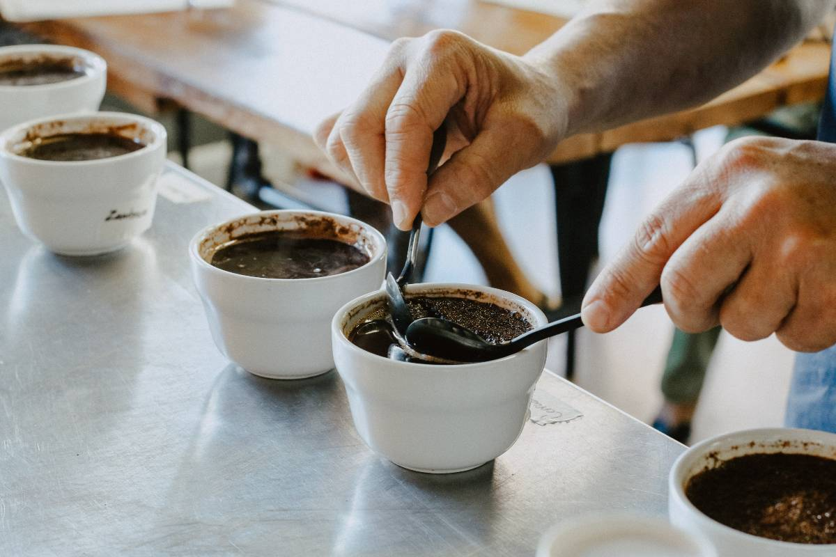 COLOMBIA CUP OF EXCELLENCE WINNERS ANNOUNCED