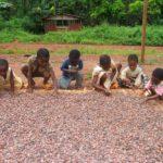 CONDENAS DE CARCEL PARA 22 PERSONAS CONDENADAS POR TRABAJO INFANTIL EN CÔTE D & #039; IVOIRE