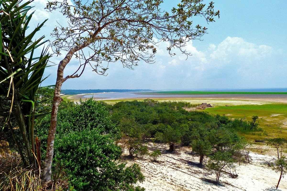 JAIR BOLSONARO'S PLANS BLACKMAIL WITH THE AMAZON AS HOSTAGE