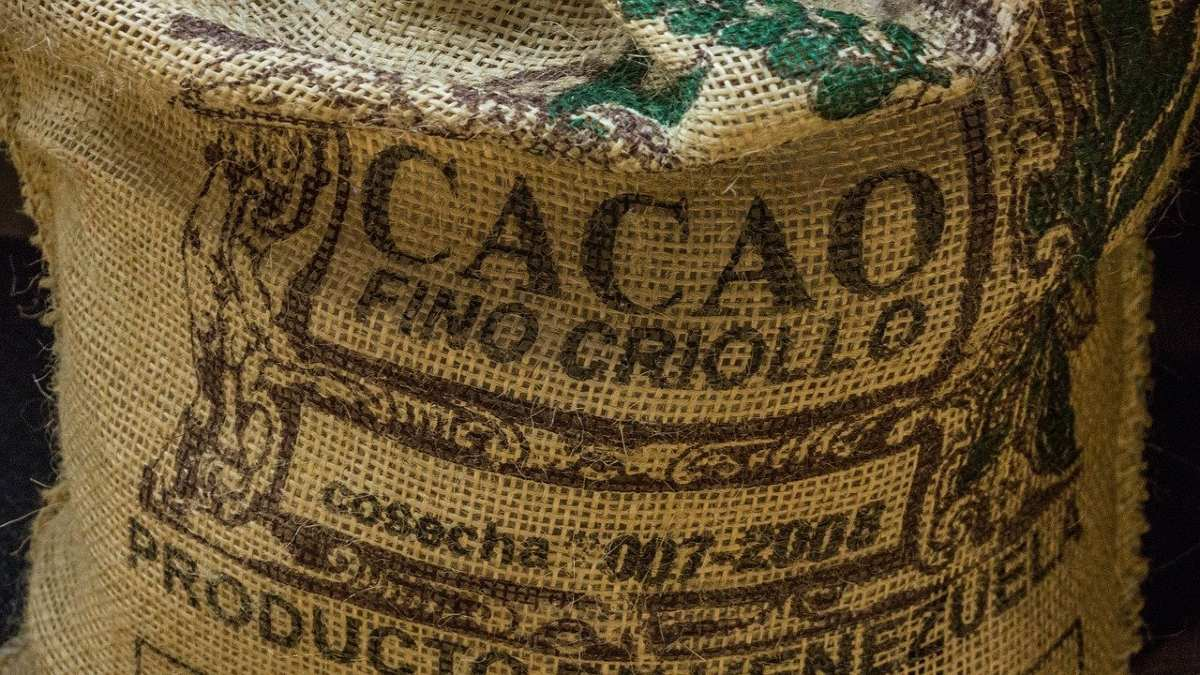 COCOBOD USES DEBT TO PAY FARMERS AFTER BUMPER HARVEST