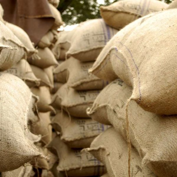 CÔTE D'IVOIRE SELLS 950,000 TONS OF COCOA AT A DISCOUNT TO OFFSET LID