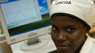 ghana cocoa processing