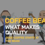 BEAN TALK -  WHAT IS COFFEE BEAN QUALITY? MYSTERIES OF THE BEAN REVEALED.