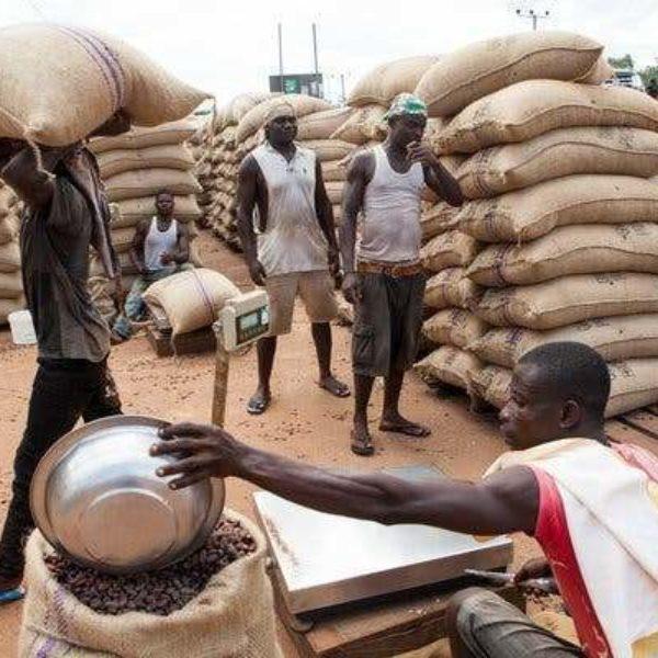 LE GHANA ACHÈTE ENFIN DES BALANCES ÉLECTRONIQUES DANS LE CADRE DE LA RESTRUCTURATION DE COCOBOD