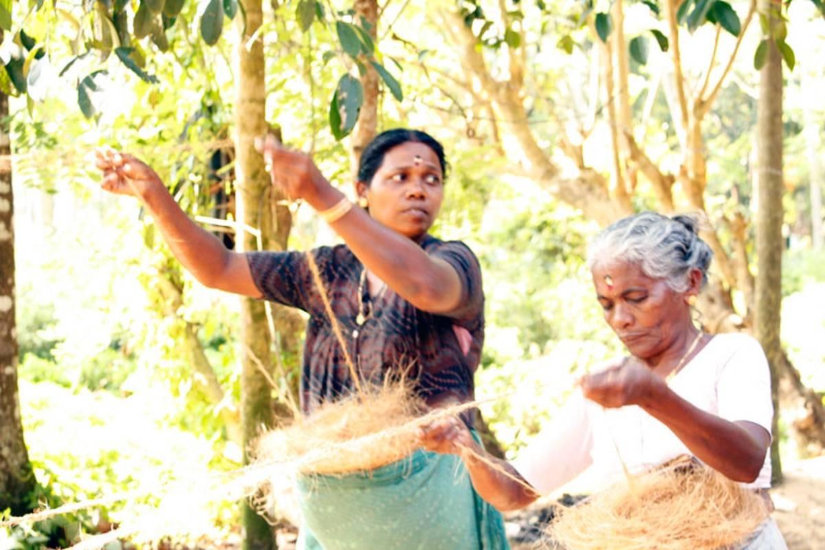 tata india coffee farming