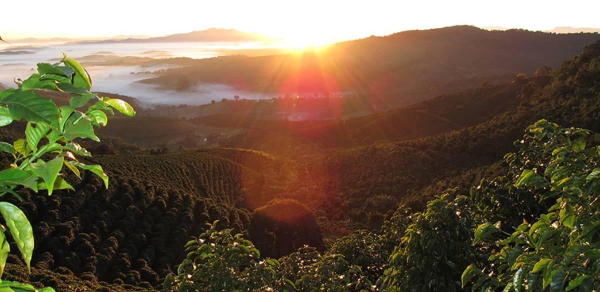 STARBUCKS OPENS FARMER SUPPORT CENTRE IN BRAZIL