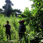 SOCIAL CHANGE FROM ETHICAL COCOA AND COFFEE: MOKA'S STORY IN CAMEROON