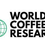 WCR CONFIRME QU'IL FERMERA LE PROGRAMME GLOBAL DE SURVEILLANCE DU CAFÉ