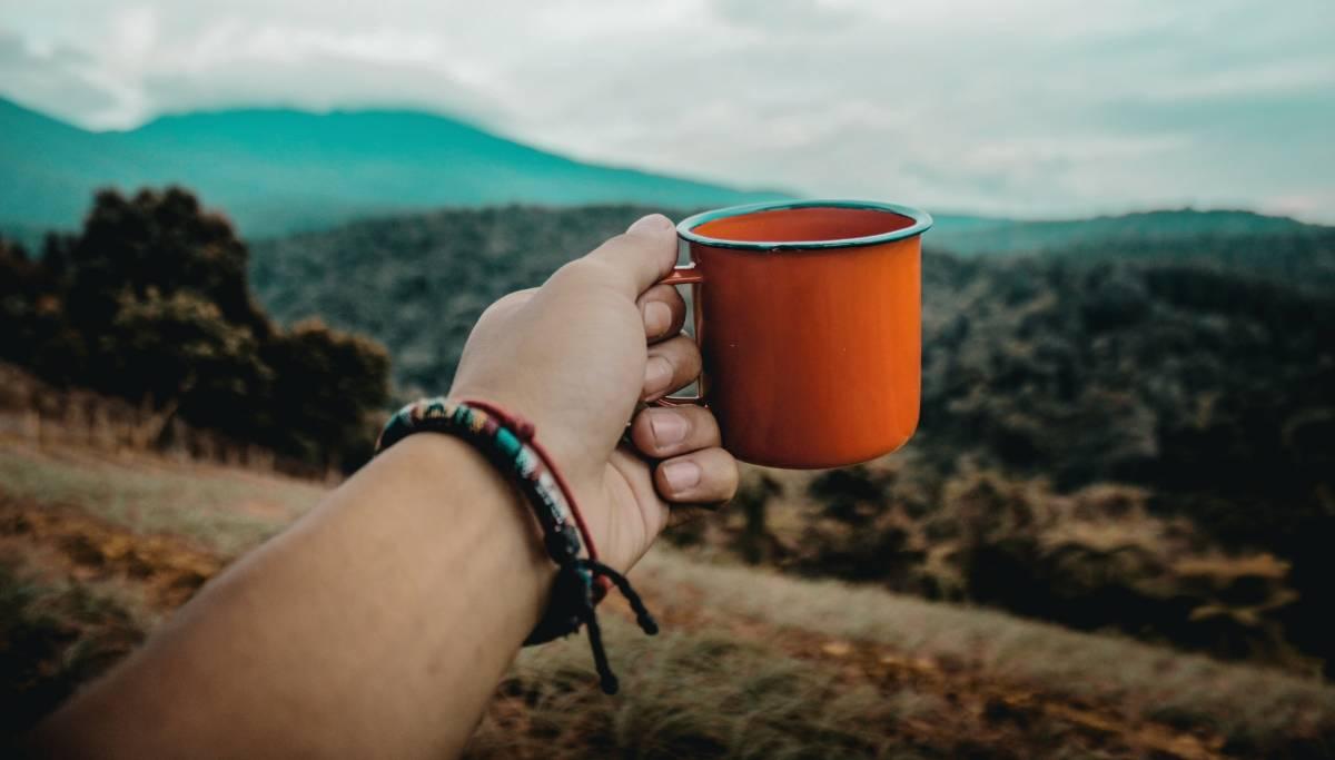 LE BON MOMENT POUR CULTIVER LE CAFÉ AUX ÉTATS-UNIS?